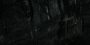 Cemetery Path 10