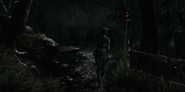 Cemetery Path 5
