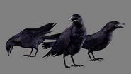Outbreak concept art - Crow