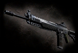 SIG 556 (MG) | Resident Evil Wiki | FANDOM powered by Wikia Sig 556 Resident Evil 5