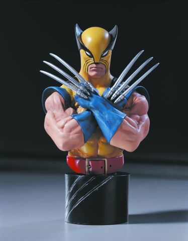 File:WOLVERINE1-25th anniversary.jpg