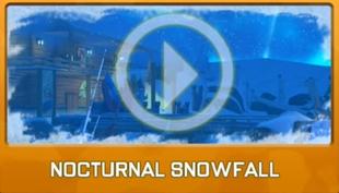 Nocturnal Snowfall