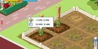 Garden Plots