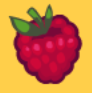 File:RaspberryTemporary.png