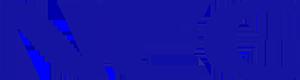 File:NEC logo.png