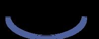 Pocketstation logo