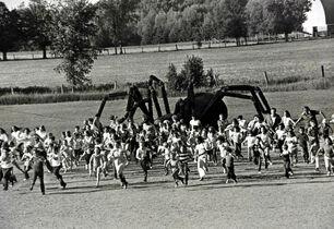 Ballpark-spider-2