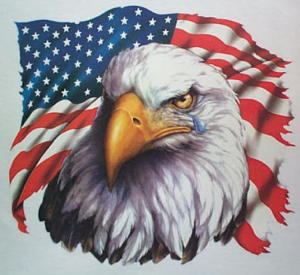 American Flag & Crying Bald Eagle Patriotic