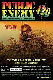Cover of book, Public Enemy 420