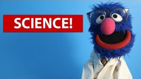 5 Fun Science Experiments for Kids (w Grover!) 5facts