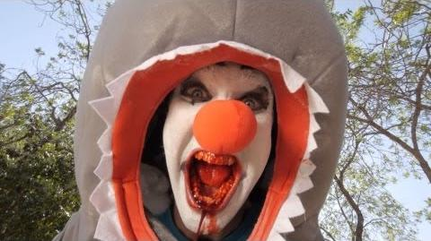 Clown Shark