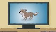 S1e2 feral dog