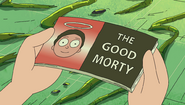 The Good Morty - cover