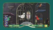 S1e8 lonely bird lady