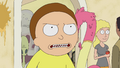 S1e11 mad morty.png