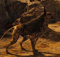 Riddick's Dog