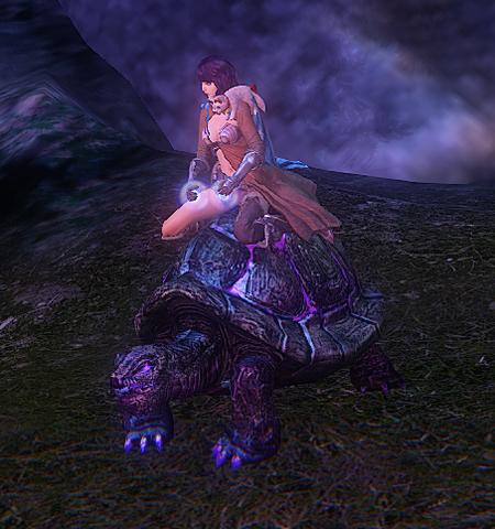 File:Shimmerwood Turtle - mount.png