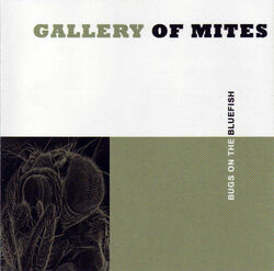 Gallery of Mites