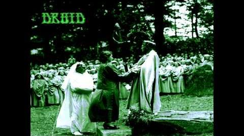 Druid - Roots & Being