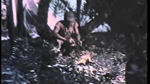 King of Kong Island (RiffTrax Presents) Trailer