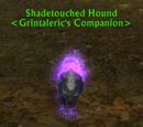 Shadetouched Hound