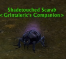 Shadetouched Scarab