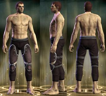 PvP R6 Plate Leg Brigadier Male