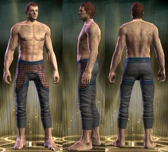 PvP R6 Chain Exemplar Legs Male