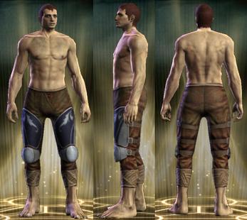 Plate 2 - Copper Legs Male