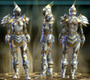Guardian Raid Leather Set