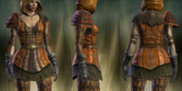 Marauder's Leather Set