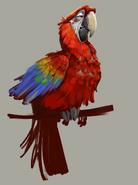 Nero macaw