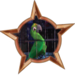 Bronze Badge Crazy Bird