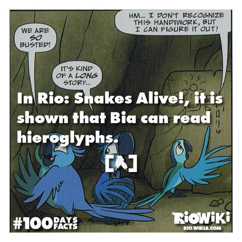 File:Rio-Wiki-100Days100Facts-064.jpg