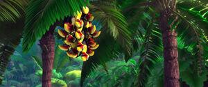 Rio (movie) wallpaper - Black Mandibled Toucans
