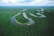 Amazon river more oxbow river shape