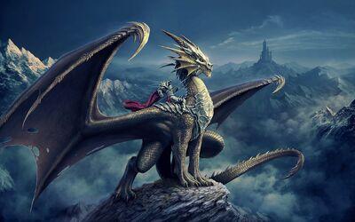 Dragon Image-12