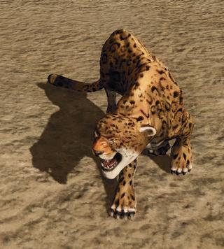 R2 Cr Jaguar