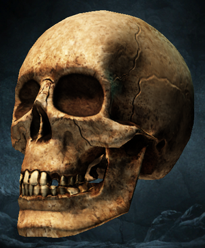 LI Skull of Death