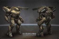 Triton80