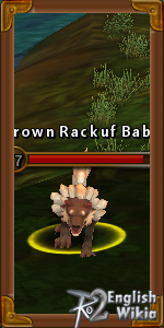 BrownRackuf Baby