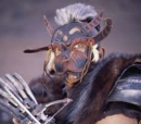 Bearclaw Mohawk