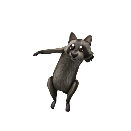 Catalog:Shoulder Raccoon | ROBLOX Wikia | FANDOM powered ...