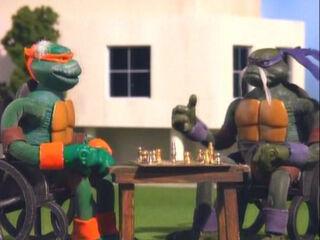 Senior Mutant Ninja Turtles