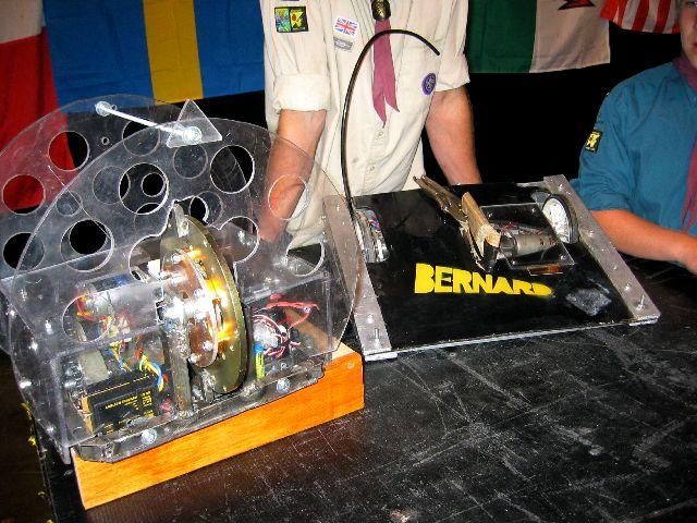 File:Bernardalienator.JPG
