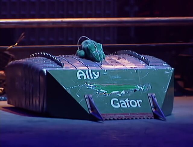 File:Ally gator.JPG