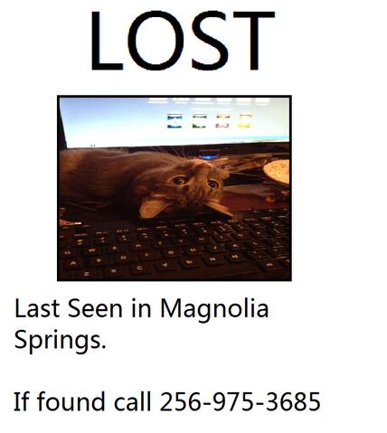 File:Find elanor.png