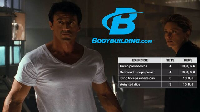 File:Sylvester Stallone Triceps 3 Workout.JPG