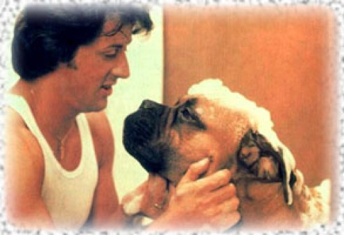 File:Rocky and Butkus.jpg