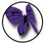 Rank s 04 monarch